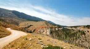 Camino torcido de la cala a través de las montañas de Pryor en Montana Imagenes de archivo