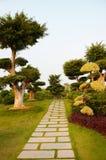 Camino a través de árboles Imagen de archivo
