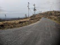 Camino a través de la montaña de Biskupia Kopa imagenes de archivo