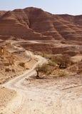 Camino a través de las colinas del desierto del Néguev Fotos de archivo libres de regalías