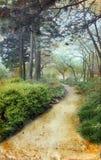 Camino a través de los pinos en el fondo de Grunge Imagen de archivo