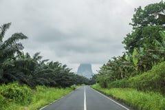 Camino a través del bosque africano de Sao Tome fotografía de archivo libre de regalías