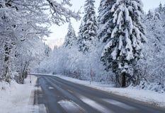 Camino a través del bosque en invierno Fotos de archivo