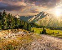 Camino a través del bosque a las altas montañas en la puesta del sol Foto de archivo libre de regalías