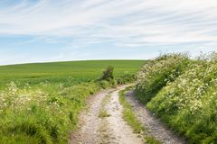 Camino a través del campo Foto de archivo