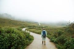 Camino a través del campo del arroz Imágenes de archivo libres de regalías