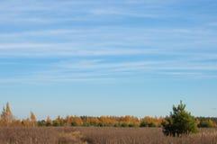 Camino a través del campo en los rayos del sol del otoño Imagen de archivo