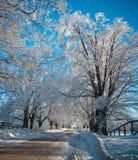Camino a través del hielo Imagen de archivo libre de regalías