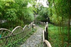 Camino a través del hurst de bambú Imagenes de archivo