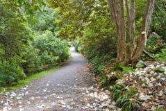 Camino a través del jardín de Inverewe Fotografía de archivo libre de regalías