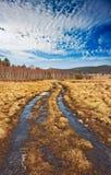 Camino a través del prado Imagenes de archivo