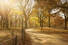 Camino a través del Central Park Imagenes de archivo