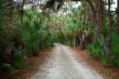Camino tropical Fotos de archivo libres de regalías