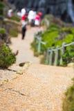 Camino en la naturaleza Foto de archivo libre de regalías