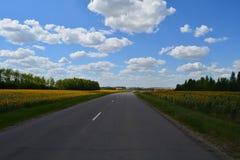 Camino vacío Imagen de archivo libre de regalías