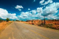 Camino vacío en desierto, camino del desierto, Colombia Foto de archivo libre de regalías