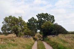 Camino vacío en el campo Fotos de archivo libres de regalías