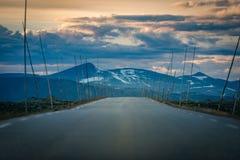 Camino vacío en Noruega, Europa Viaje de la puesta del sol Fotografía de archivo