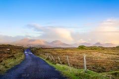 Camino vacío entre los prados que llevan a las montañas en distancia lejana fotografía de archivo