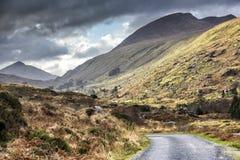 Camino vacío Irlanda 0002 Fotos de archivo libres de regalías