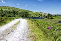 Camino vacío Irlanda 0023 Fotos de archivo libres de regalías