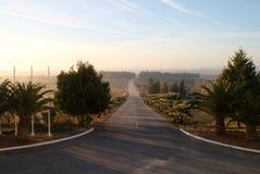 Camino vacío, Portugal Foto de archivo