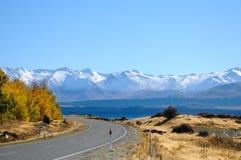 Camino vacío que lleva a través del campo escénico, cocinero National Park, Nueva Zelanda del soporte Fotografía de archivo