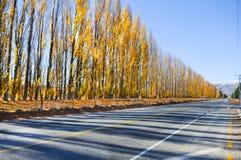 Camino vacío que lleva a través del campo escénico, Nueva Zelanda Fotos de archivo
