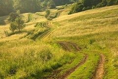 Camino verde Foto de archivo libre de regalías