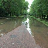 Camino verde después de la lluvia Fotos de archivo