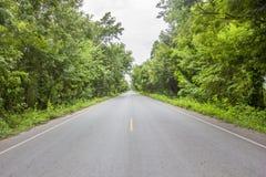 El camino verde en conectividad entre las ciudades Foto de archivo