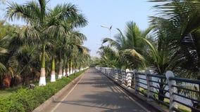 Camino verde impresionante Foto de archivo