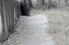 Camino viejo Foto de archivo libre de regalías
