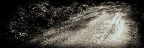 Camino viejo en la bandera de la web del bosque imagenes de archivo