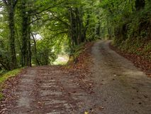 Camino-waymark an einer Gabel im Schotterweg - Triacastela lizenzfreie stockbilder