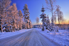 Camino y árboles del invierno en puesta del sol foto de archivo libre de regalías