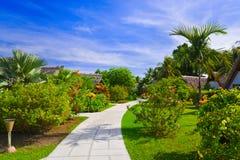 Camino y casas de planta baja en parque tropical imagen de archivo