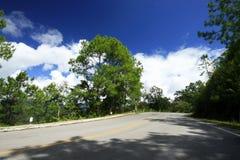 Camino y curva Foto de archivo libre de regalías