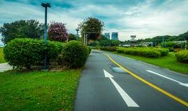 Camino y el jardín Imagen de archivo libre de regalías