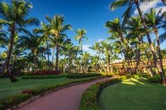 Camino y jardín tropical en el complejo playero, Punta Cana Imágenes de archivo libres de regalías