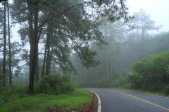 Camino y niebla. Imagen de archivo libre de regalías