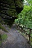 Camino y roca de bosque Imagen de archivo libre de regalías