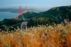 Caminos cerca de puente Golden Gate Imagen de archivo