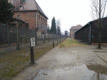 Caminos de Auschwitz Imágenes de archivo libres de regalías