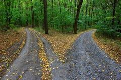 Caminos de la bifurcación Foto de archivo libre de regalías
