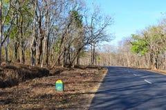 Caminos de la selva de Kerala - bosque de Bandipur Fotos de archivo libres de regalías