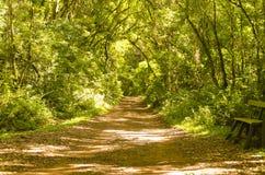 Caminos de las naturalezas Fotografía de archivo libre de regalías