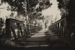 Caminos olvidados Imágenes de archivo libres de regalías