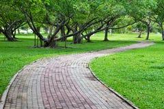 Caminos a través del parque Fotos de archivo