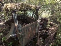 Camion abandonné en Forest Overran avec de la mousse et des arbres Photo stock